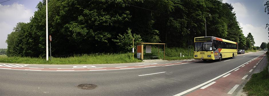 Hallerbos public transport TEC 114