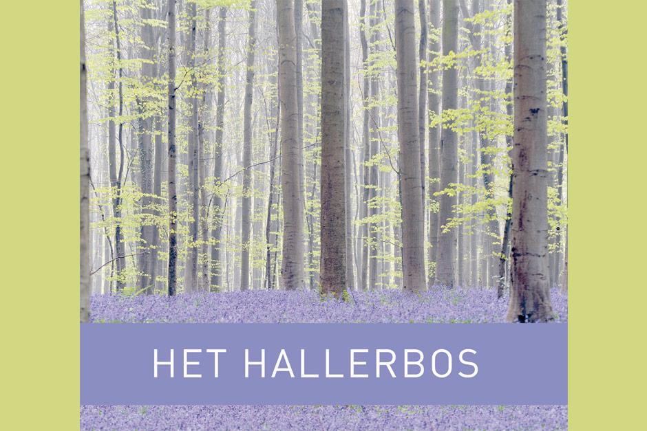 cover boek hallerbos