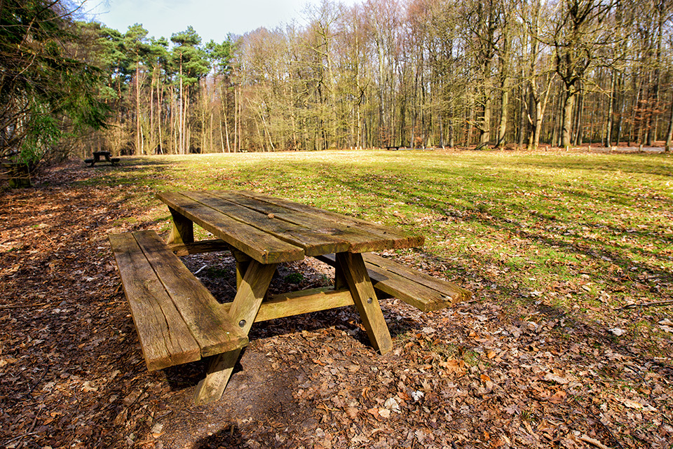hallerbos picknicktafel parking 6 speelweide