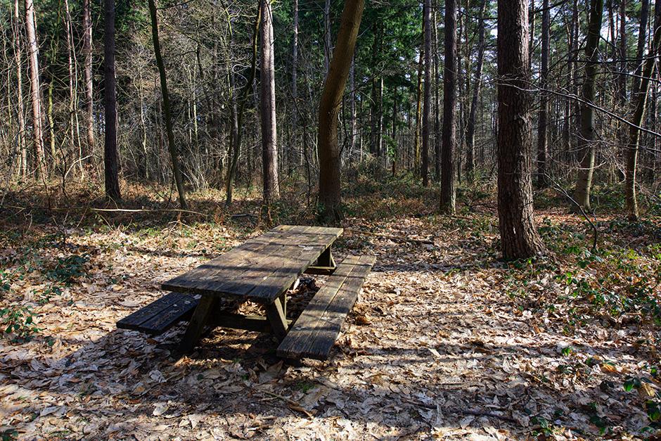 hallerbos picknicktafel veertigbunderdreef