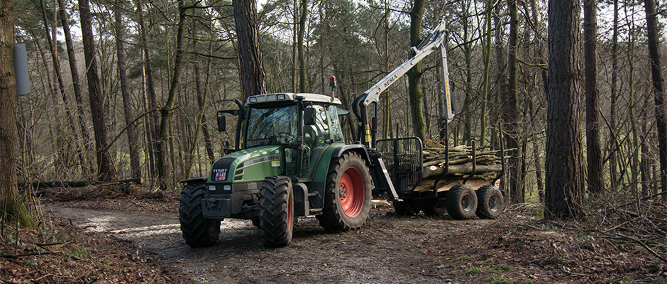 hallerbos houttransport