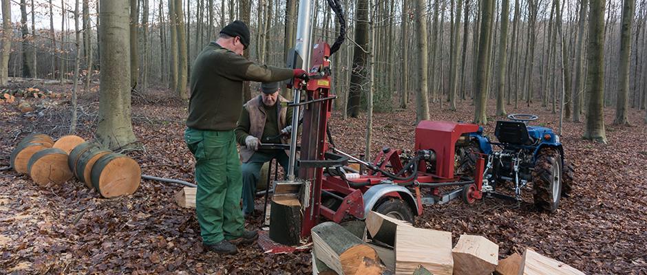 hallerbos brandhout klieven