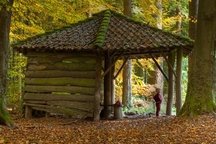 hallerbos herfst schuilhut Acht Dreven