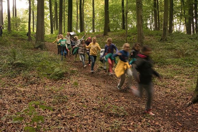 week van het bos hallerbos
